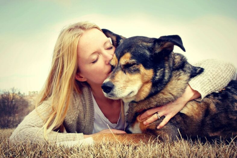 Keep Your Dog's Brain Youthful