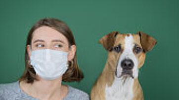 Dog Allergy